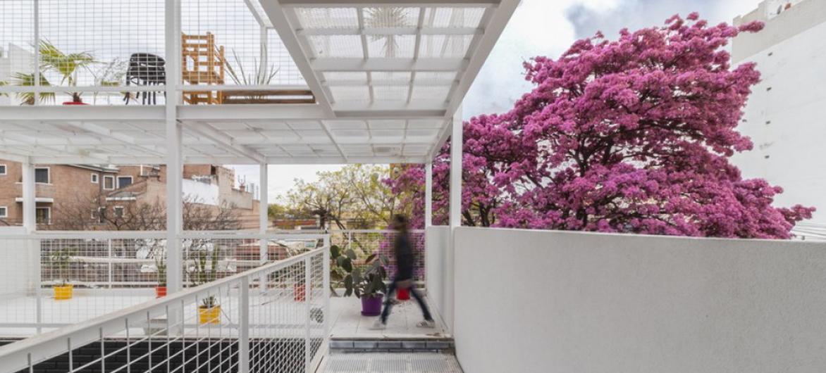 卡塔马卡公寓,以诗与艺术点缀空白 / Carlos Alejandro Ciravegna