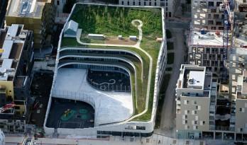将自然元素引入学校,巴黎生物多样性小学