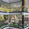 明亮色彩与不同主题营造的图书馆空间