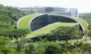 屋顶变成了草坡,南洋理工大学艺术设计传媒学院
