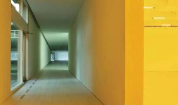 奥拉维尔·埃利亚松:论颜色与感知