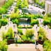 墨西哥城带状公园 城市中央的绿洲