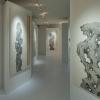 空间与作品的细腻结合 极小空间中的彭薇作品展