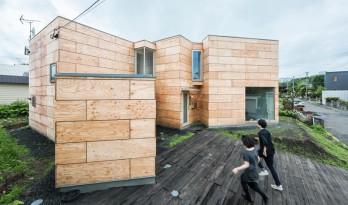 串联的木方盒组成的艺术家住宅