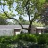 藤蔓爬上墙,曲线立面救护站在森林吹起号角