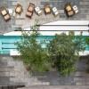 深沉中的一道绿意盎然:置庭院于黑色混凝土格构围合空间