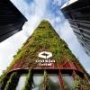 建一座楼让绿植直上蓝天,开一口窗让旅人坐拥城市