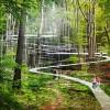 """如明珠,熠熠生辉;似飘带,编织缠绕——仙境般的""""Parkorman公园"""""""