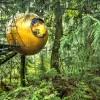 森林中神秘的球状树屋旅馆Free Spirit Spheres