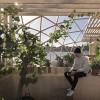 温室般的室内生活,穹顶下的工作室