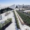扮演传播与塑造历史,社会和文化角色的巴勒斯坦博物馆
