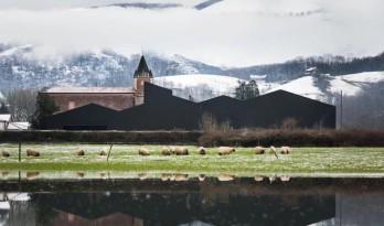 工业建筑中的一股清流,山谷中的高颜值制药工厂