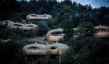 """精品酒店:卢旺达公园里的""""茅草屋"""""""