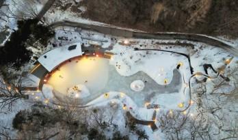 冰雪奇缘——木瓦板饰面的林间溜冰俱乐部