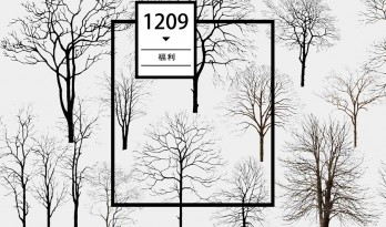 每日福利 / 冬日雪景怎么做?枯树少不了!
