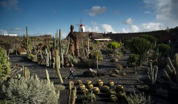 火山与海的结晶,野性与古老技艺的火花——César Manrique的塞萨尔花园