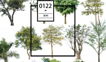 每日福利 / 这些配景树素材你一定不要错过(第二弹)