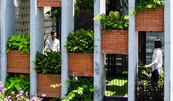 自然天光居于此,仿若置身桃源中 — 越南度假住宅