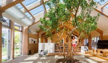 榕树下的儿童放逐空间—HN 托儿所