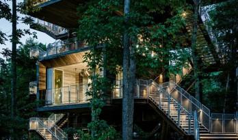 成为森林生态的一部分 — 逐级攀岩的树屋