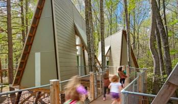 为女童子军建造的天然树屋:Graham营地