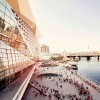 让城市拥抱自然——悉尼达令港公共空间,澳大利亚  / HASSELL
