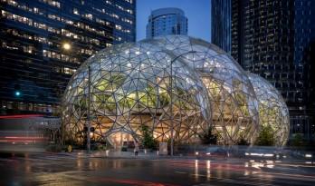 夜幕中一串巨大而明亮的泡泡:亚马逊总部球形餐厅