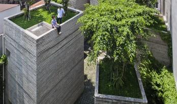 仿佛温暖质朴的老旧记忆:树家 / 武重义建筑事务所