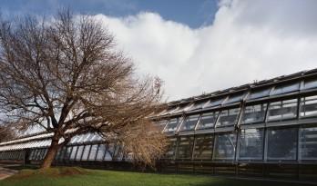 Simonne-Mathieu 网球场,以水晶宫为灵感的温室球场