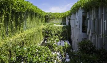 千寻森林瀑布倾泻而下的光影空间:Naman 温泉会所 / MIA Design Studio