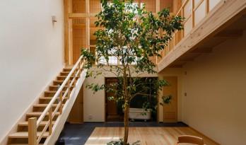 京都之宅,将庭院搬进家里 / 07BEACH
