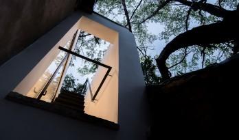 樹院 / 兼建筑