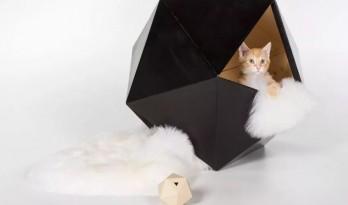 天呐!看看这些大牌建筑师都对猫咪做了什么?