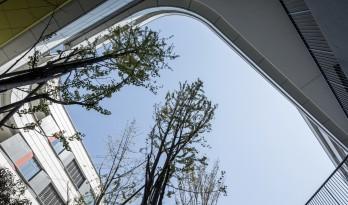 漂浮的立体校园——浙江大学教育学院附属中学 / 浙江大学建筑设计研究院有限公司