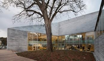 小镇树院——皇后镇媒体图书馆