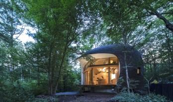 可爱俏皮,森林中的壳型土屋