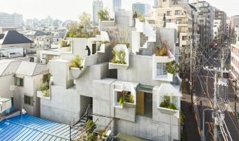 像树一样生长延伸:日本丰岛画廊住宅 / 平田晃久建筑事务所