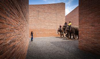 大象是用户,红砖是最爱,这是什么神仙事务所?