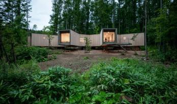 """北海道森林小屋,延伸的""""触角"""" / Florian Busch Architects"""