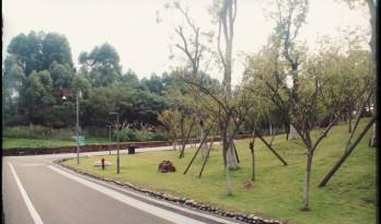 OMA拉·维莱特公园方案重现:致我们今天无聊的城市公园