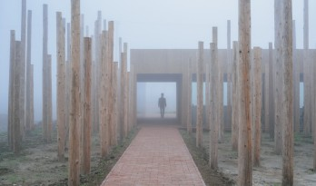 树林里的图书室:自然向建筑的转译/空间里