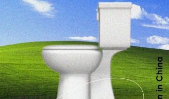 观点访谈   如何在中国乡村,上一个有尊严的厕所?