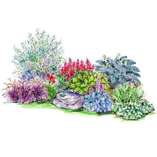 Colorful Shade Garden Plan