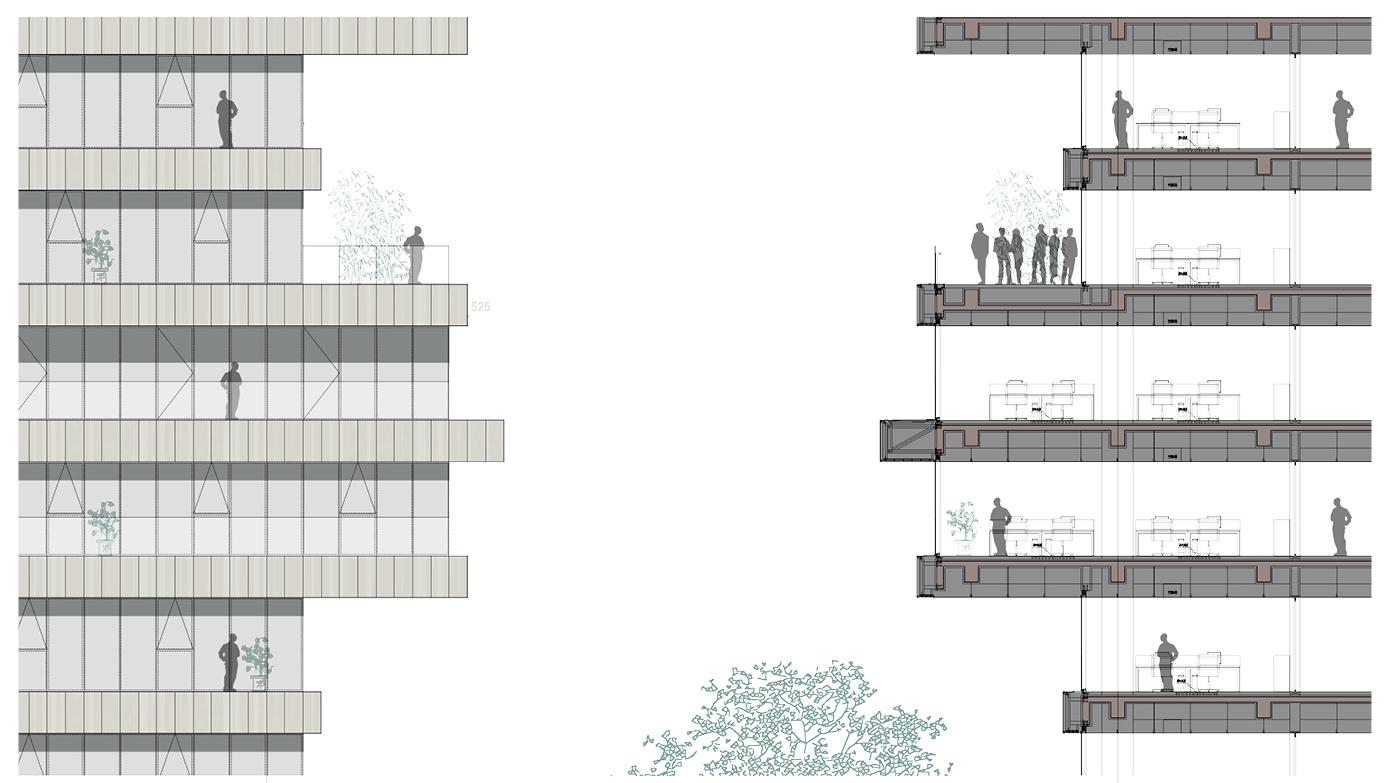 煙雨師大,琢玉成器——杭師大/維思平建築設計插图18