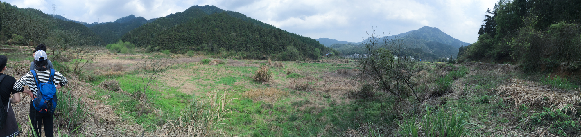 西朝坞山谷中的一块野地 A piece of wild land in the valley of Xichaowu _.jpg