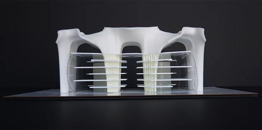 造型有机,骨骼外露的伊斯坦布尔技术大学图书馆图片