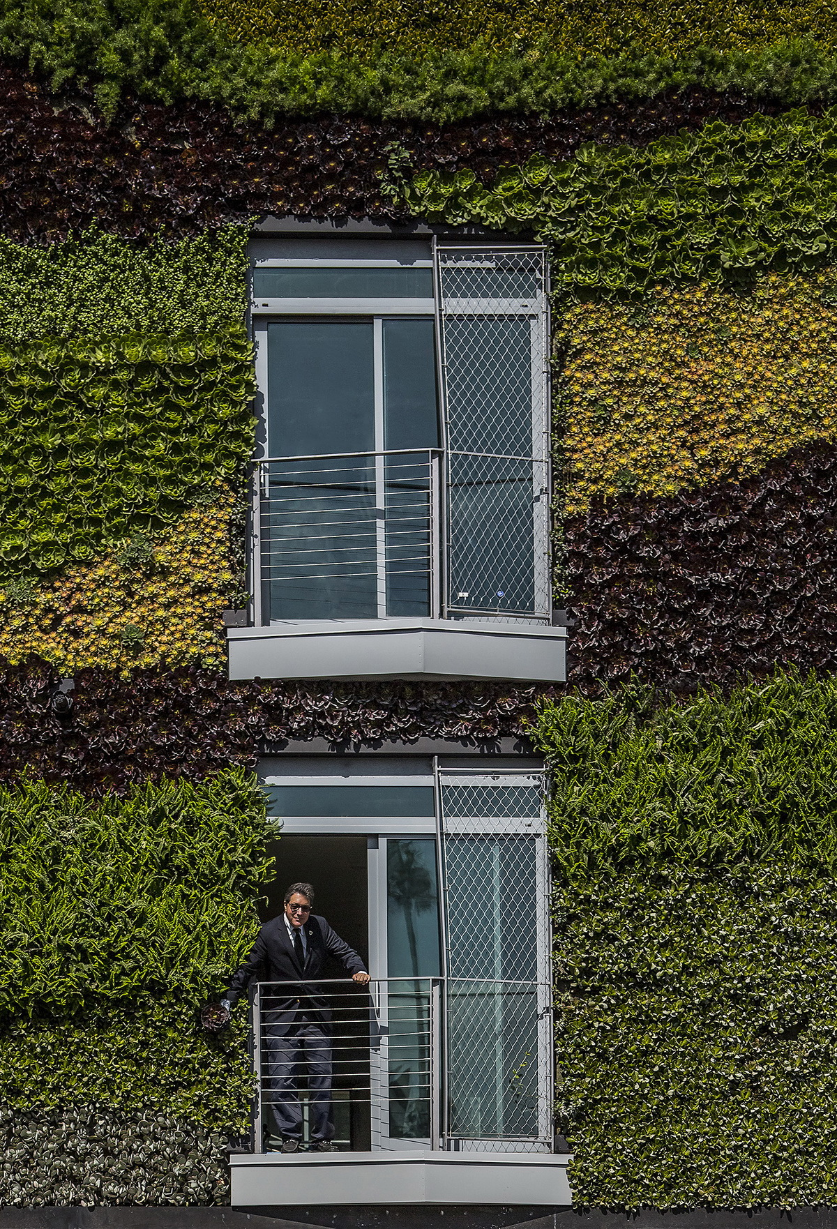 e3 _MAD_Gardenhouse_Green Wall_photo by Manolo Langis_调整大小.jpg
