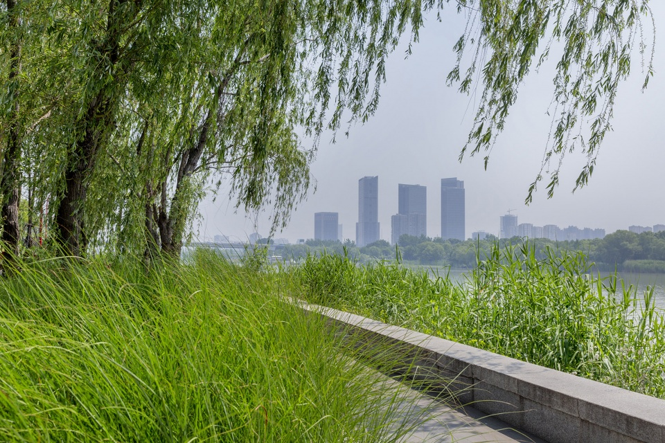 012-riverside-commercial-eco-park-china-by-collective-landscape-design-960x640.jpg
